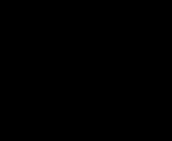 Coal Molecule Diagram